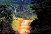 Photo : F. Lefebvre - Site EuropeAid - Route au Cameroun