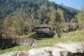 Agriculture Népal