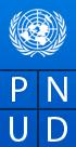 logo_pnud